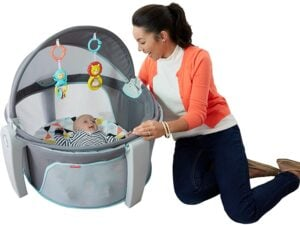 cool pontoon accessories fisher-price on-the-go baby dome